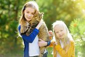 Cute Little Girls With Their Cat On Sunny Autumn Day. Adorable Children Holding Their Pet Kitty. Kid poster