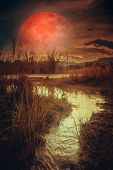 Landscape At Night Time In The Forest Lake With Fogy And Darkness Sky Super Blood Moon In The Backgr poster