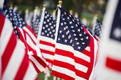 image of waving american flag  - American stars and stripes flags in detail - JPG