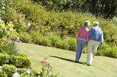 stock photo of elderly couple  - Senior couple walking through a flower garden - JPG