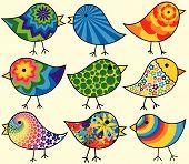 Постер, плакат: Девять красочные птицы