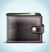 Realistic Wallet