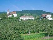 Wine Village of Spitz,Wachau,Austria