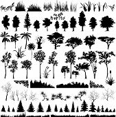 Detailed Vectoral Tree, Grass And Bush Silhouettes