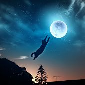 stock photo of goodnight  - Image of cat in jump catching moon - JPG