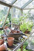 Gardening equipment on workbench in greenhouse
