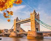 Tower Bridge mit Herbstlaub, London