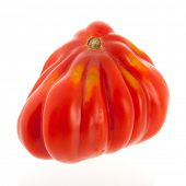 picture of boeuf  - coeur de boeuf tomato isolated over white background - JPG