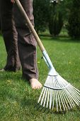 pic of leaf-blower  - young woman raking leaves in the garden - JPG