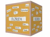 Florida State Cube