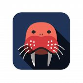 Walrus face flat design