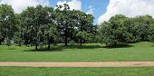 picture of kensington  - The Kensington Gardens and Hide Park London UK - JPG
