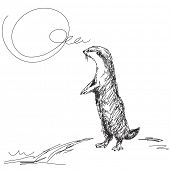Sketch of asian small clawed otter Vector
