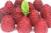 Raspberries Closeup