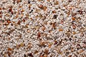 Gravel Pattern Sand Color Background