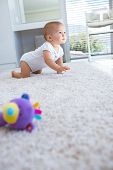 Side view of a cute baby crawling on carpet at home