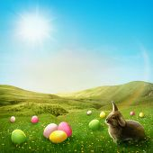 Spring meadow with rabbit and easter eggs