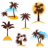 stylized palm trees