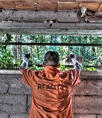 Reality Prisoner