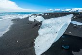 Beautiful beach in the South of Iceland with a black lava sand is full of icebergs from glaciers not