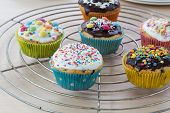 Muffins On Wooden And Cooling Grid