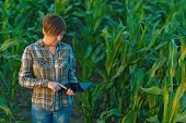 foto of genetic engineering  - Female agronomist with tablet computer in agricultural cultivated corn field - JPG