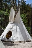 Native American Tee - Pee