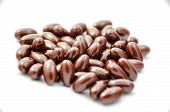 Brown Capsule Food Supplement Tablets On White Background Isolated