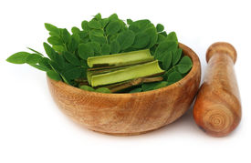 picture of malunggay  - Moringa leaves and bark and mortar pestle over white background - JPG