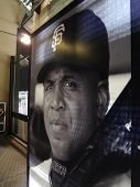 Larger Than Life Sized Poster Of Home Run Leader And Giants Legend Barry Bonds In Free Section Of At