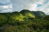 Sunlight with Tropical rain forest