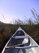 Bow Of Canoe Plowing Through Wetland Grasses