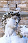 The Side View Of The David Sculpture Head In Florence