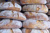 Bread.