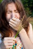 pic of hay fever  - Portrait of sneezing girl with hay - JPG