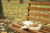 Open book with leaf lying on brown bench in autumn park