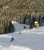 Downhill Skiing In Sunny Day