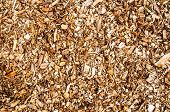 pic of combustion  - Wooden chips for combustion in a biomass firing plant - JPG