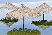 stock photo of flood  - Reed sunshades flooded after havy rains connected with climate changes - JPG