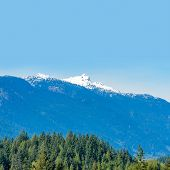 stock photo of tramp  - Fragment of Mountain View in Vancouver - JPG