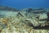 stock photo of wrecking  - Multiple species of fish living in a wreck - JPG