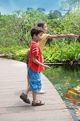 picture of fish pond  - Young boy with sister feeding the koi carp fish in the ornamental pond - JPG