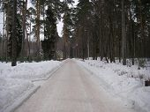 picture of conduction  - The road with beautiful types conducting and attracting in uncertainty - JPG