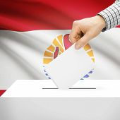 picture of french polynesia  - Ballot box with national flag on background series  - JPG