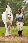 Woman With Big White Shire Horse