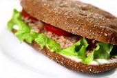 Как сделать сэндвич с тунцом