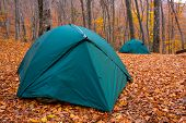 Tourist Tents In Forest poster