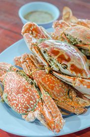 foto of cooked crab  - steamed flower crab or blue crab blue manna crab sand crab - JPG