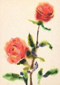 image of wet  - Illustration of watercolor rose on a grunge paper texture - JPG