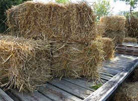 foto of wagon  - Undecorated bales of hay are arranged on an old wagon ready for pumpkins - JPG